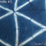 Indigo-Trellis-3b
